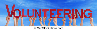 Many People Hands Holding Red Straight Word Volunteering...