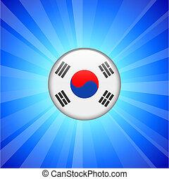 Korea Flag Icon on Internet Button