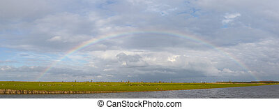 Complete semicircle rainbow over the Oostvaardersplassen,...