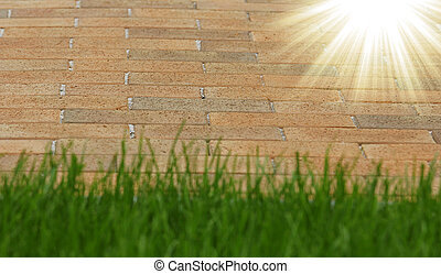 green grass background - a green grass background