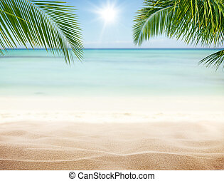 Summer sandy beach with blur ocean on background. Palm...