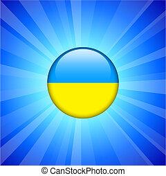 Ukraine Flag Icon on Internet Button