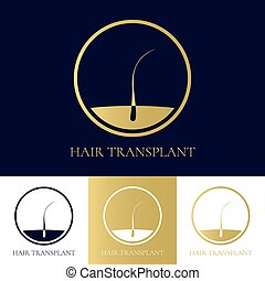 Hair transplant icon - Hair transplant logo template. Hair...