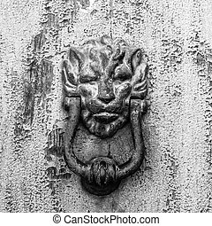 Knocker lion head, black and white