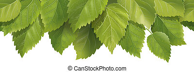Composition of the leaves - detailed illustration for your...
