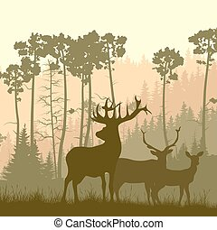 Wild elk on edge of forest. - Vector square illustration of...