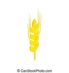 Two stalks of ripe barley isometric 3d icon on a white...