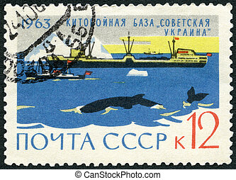 """USSR - 1963: shows Whaler floating whale factory """"Soviet..."""