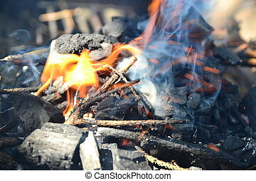 firing up the grill - ignition and ignition of wood...