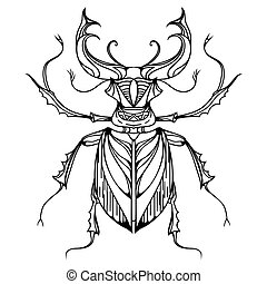 Hand drawn vintage stag beetle. Insect with doodle pattern. Vector element for tattoo sketch, printing on T-shirts, postcards and your design