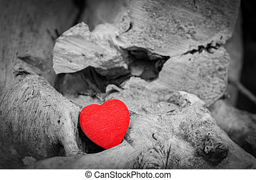 Red heart in a tree trunk and branches Love symbol Red...