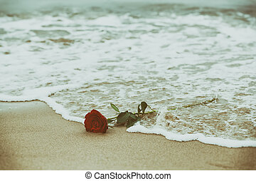Waves washing away a red rose from the beach Vintage Love -...