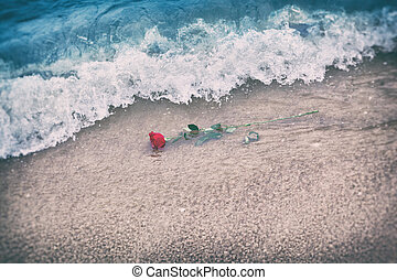 Waves washing away a red rose from the beach. Vintage. Love...