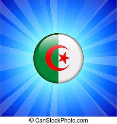 Algeria Flag Icon on Internet Button