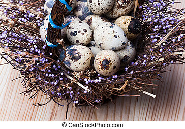 Quail eggs in a nest