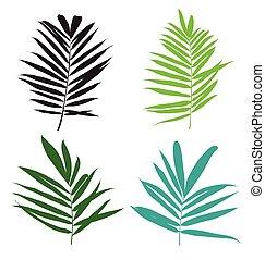 palm leaf set - vector illustration of palm leaf set