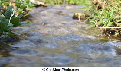 Pure fresh water  - Clear stream on a green meadow