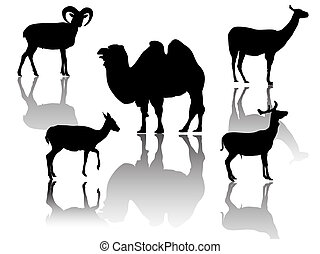 little group of hoofed animals