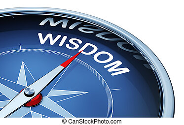 wisdom - 3D rendering of a compass with a wisdom icon