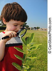 Investigating nature closeup - A young boy, in about first...