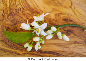 Fresh orange tree flowers on olive wood