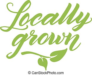 Locally grown hand drawn brush lettering isolated on white -...