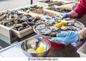 Fresh oysters, streetfood. - Tray of opened fresh oysters on...
