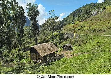 Bhutan, Trashigang, - Bhutan, home with traditional bamboo...