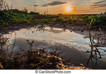 Sky reflected in a puddle of water in a field at sunset.