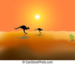 kangaroos - Silhouettes of two running kangaroos on desert...
