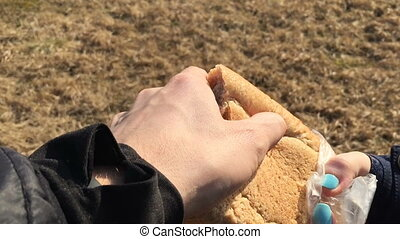 Man gives the horse a piece of bread first person view. Pov...