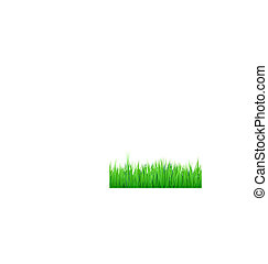 grass borders background