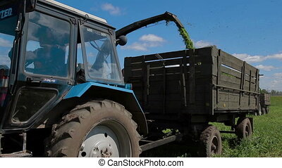 Farmer harvesting silageTractor in field - farmer combain...