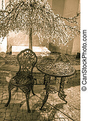 Outdoor Cafe Seating - Outdoor seating under a flowering...