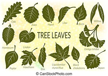 Leaves of Plants Pictogram Set - Pictograms Set, Tree...