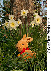 Eastern Hare - Vertical - Eastern Hare with Narcissus in a...