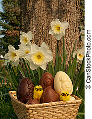 Basket Eastern Eggs in garden - Basket with Chocolate Easter...