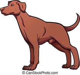 Cartoon dog - Cartoon Pointer dog. Vector clip art...