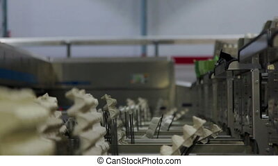 Eggs Factory Production line eggs packaging - Eggs on the...