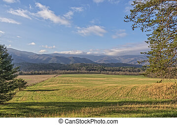 Early Morning In Cades Cove - Early Morning At Cades Cove In...