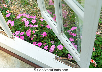 Flower garden beside window - Flower garden beside the...
