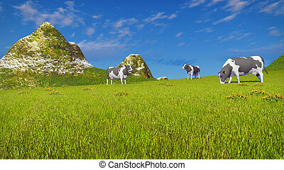 Cows graze on mountain pasture - Farm landscape with a few...