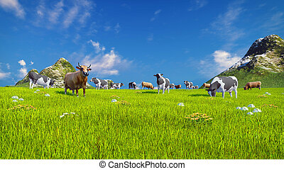 Dairy cows on spring alpine meadow - Herd of dairy cows...