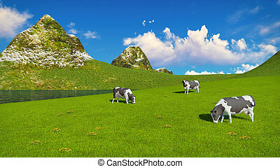 Mottled cows graze on alpine pasture - Few mottled dairy...