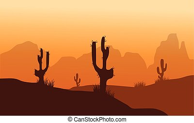Sunset with Cactus in Desert