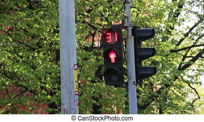 Traffic Lights at the Crossroads - Traffic lights at the...