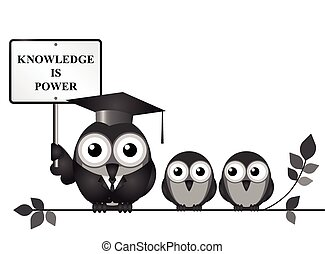 Knowledge is Power - Knowledge is power sign with bird...