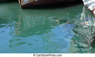 Polluted dock water - Contaminated turquoise color colour...