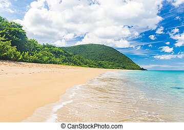 Grand Anse Beach - Great beach of Grand Anse near village of...