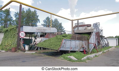 Tractor unloads grass for Herbal feed production - Herbal...